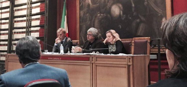 """TERREMOTO, CASA ITALIA: """"Da ministro Delrio dimostrazione di trasparenza e determinazione gestione post sisma"""""""""""