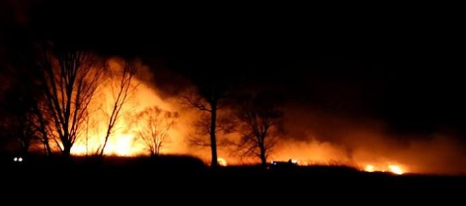 """INCENDI: """"Da rapido aggiornamento del catasto incendi parte una corretta prevenzione"""""""