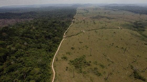 BRASILE, deforestazione da record, allarme in Amazzonia