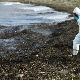 """AMBIENTE, ISPRA: """"217 casi di danno ambientale in Italia tra il 2017 e il 2018"""""""