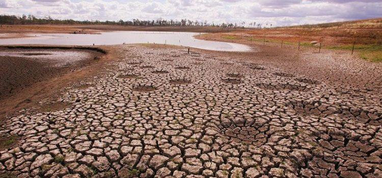 """AMBIENTE, CLIMA: """"Lotta ai cambiamenti climatici e COP26 in Italia richiedono un Paese protagonista in Europa"""""""
