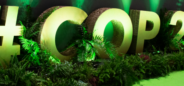 """COP25: """"Il nostro Green New Deal per salvare il pianeta"""""""