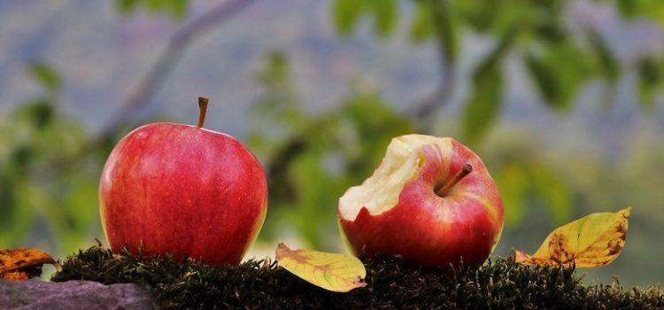 """29 SETTEMBRE 2020: """"La Prima Giornata mondiale della Consapevolezza sugli Sprechi e le Perdite alimentari"""""""