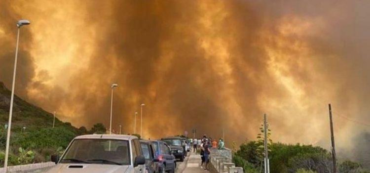 """INCENDI IN SARDEGNA: """"Sostegno e più prevenzione con il catasto delle aree incendiate"""""""